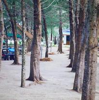 Around Resort4.jpg