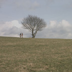 Beautiful Landscape_edited.jpg