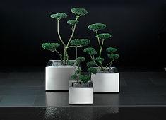 Abt-Design-Pflanzentrog-Platuno