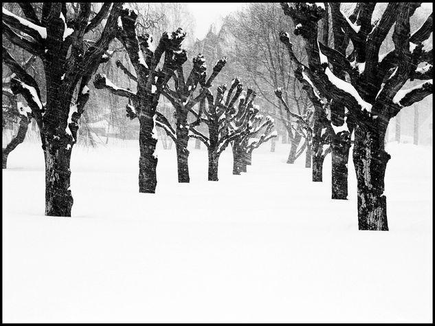vinterlandskap 2