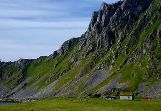 norwegian-living-2-copy.jpg