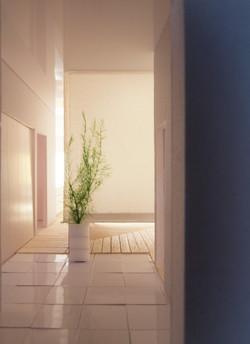 玄関より.jpg
