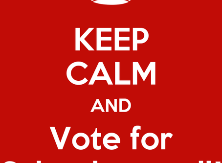Please Vote for New School Council Members