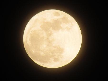 今夜2019年最大の満月!!