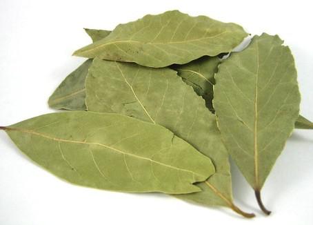 Laurel Leaf (Bay Leaf)