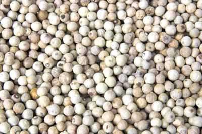 Pepper (White) (India)