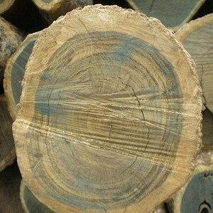 Guaiacwood (Guaiacum, Rare Salve-like consistency)