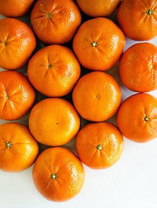 Mandarin (European Tangerine)