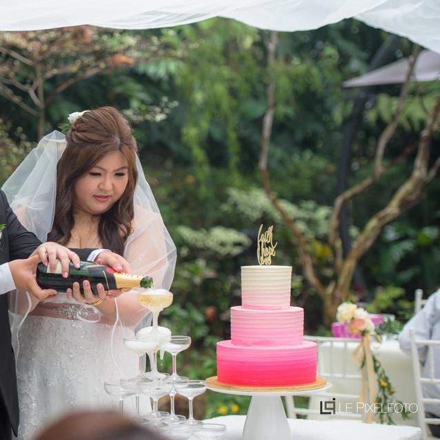 Leon and Michelle's Wedding 038.jpg
