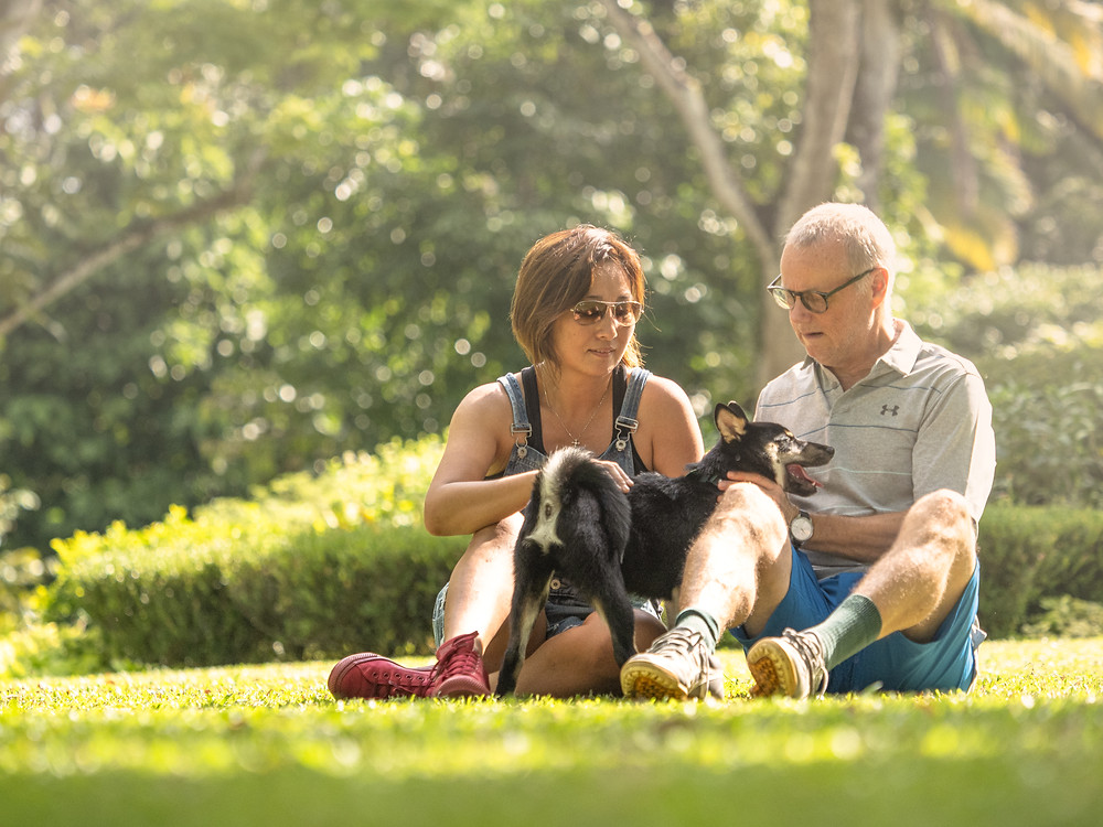 family portrait of dog photography
