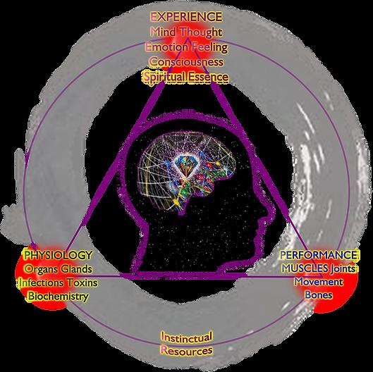 Sunya Cosmology Diagram.png