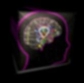 ZPI logo wordless 3d - shadow.png