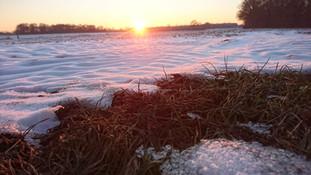 Hof am Teich - Winter