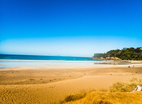 New Zealand roadtrippin p1: to the ocean and in it!