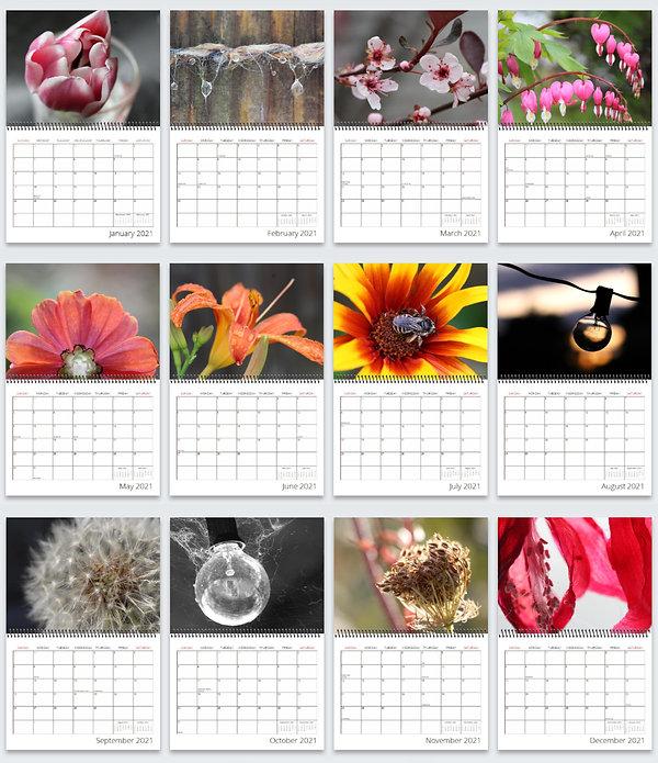 2021 calendar pages.jpg