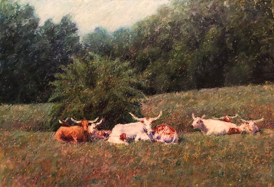 resting horns.jpg