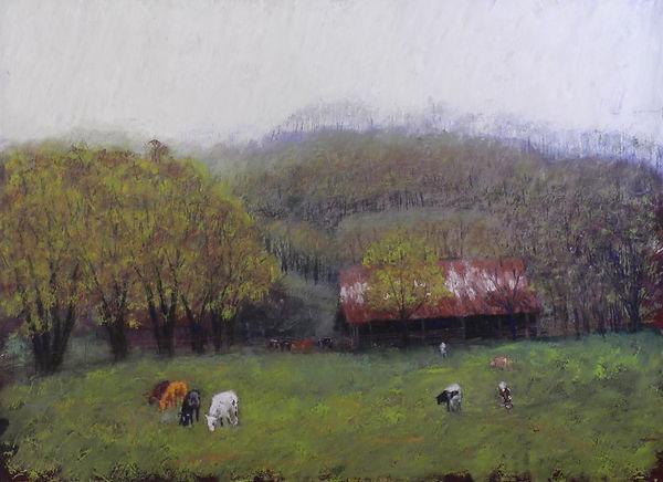Tennesee spring pasture.jpg