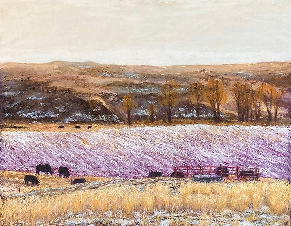winter pasture.jpg
