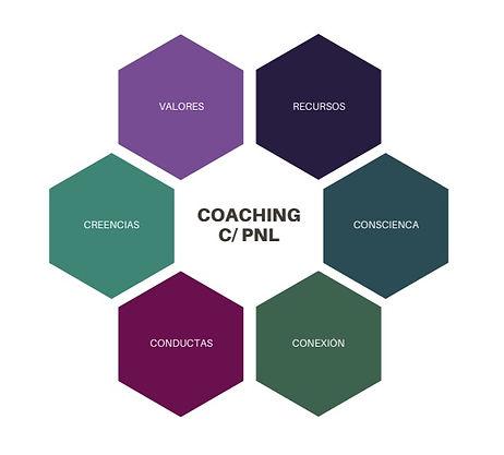 coaching con pnl, coach online, coaching online, pnl online, programación neurilingüística, coach life online