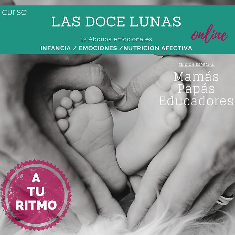 Las doce Lunas (para mamás, papás y educadores)