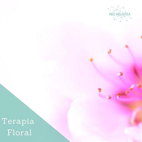 flores de Bach, terapia floral evolutiva, sesiones de flores de bach en Barcelona, flores de bach Barcelona