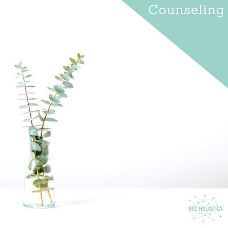 counseling en buenos aires, qué es el counseling, Erica la Fosso, terapias alternativas, estudiar terapias alternativas