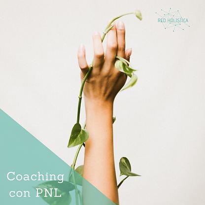 coaching con PNL, programación neuro lingüística, coach en Barcelona, coaching online, Ruth Pallejà