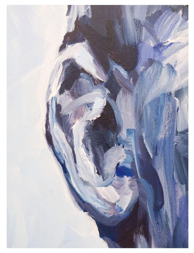 DET-FIG-SAV-blue-04.jpg Close-up - Our Savior + her - CEO Facebook.