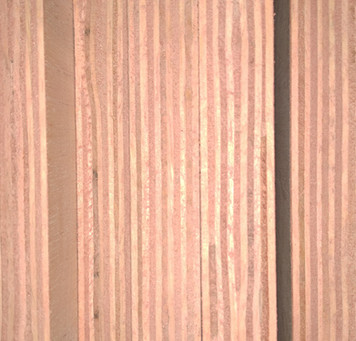 Hardwood Plywood Sheets in Perumbavoor Kerala