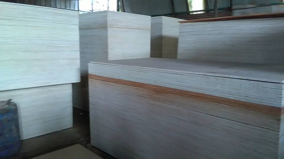 Rubberwood Plywood Kerala