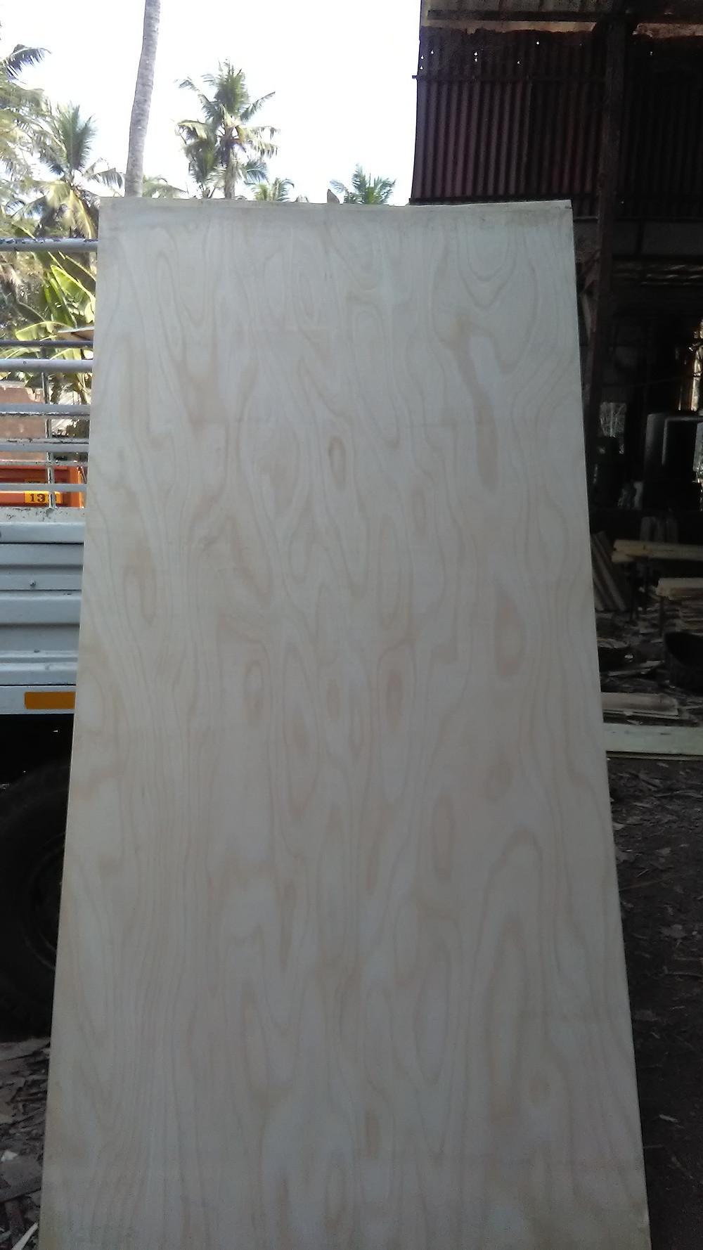Commercial Plywood with Makkai Face Veneer Kerala