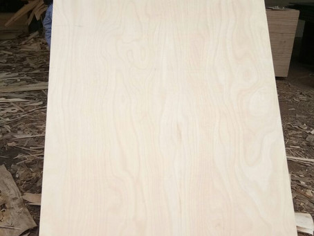 Semi Hardwood Plywood Sheets - Makkai Face