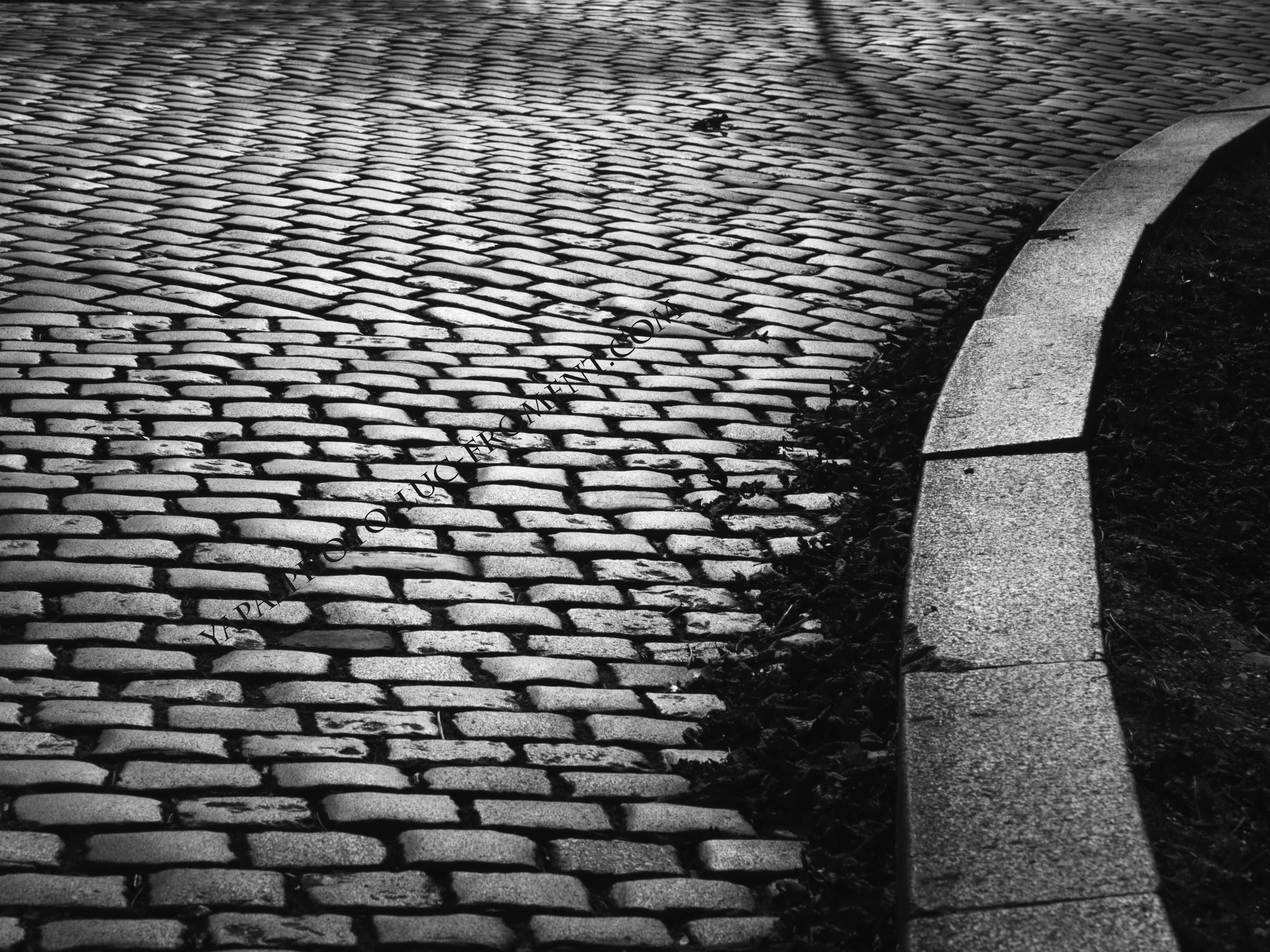 Pavés_Paris_2_WM