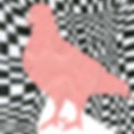 pigeonpinkLOGO.jpg
