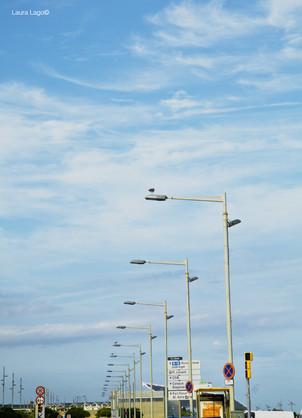lampadaires-muette--photographie-mural-decoration-laura-lago.JPG