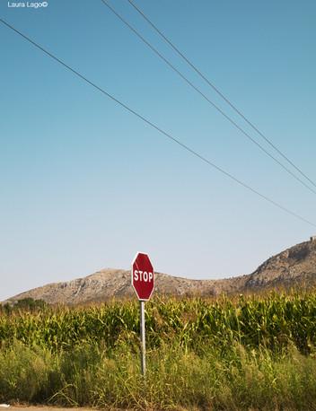 stop-panneau-chemin-photographie-mural-decoration-laura-lago