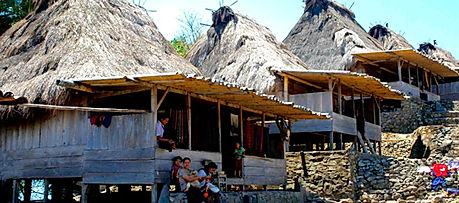 Traditional vilage in Flores