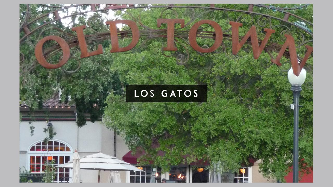 LOS GATOS WALL