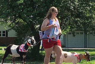 July 4th - 2 goats.jpg