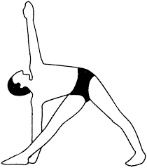 Yoga Poses for Digestive Ease