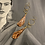 Thumbnail: Gold plated earrings and feathers with original art