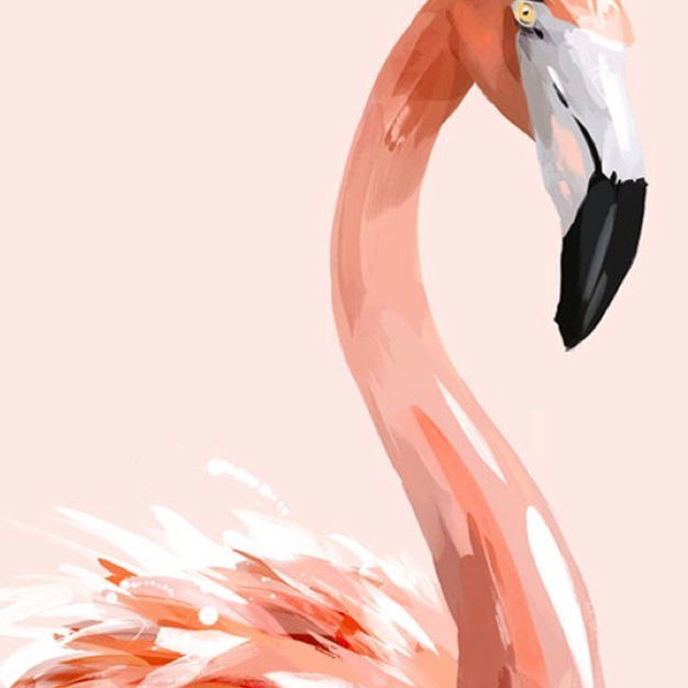 Flamingo no. 21