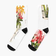 El Jarron Socks
