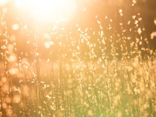 ¡Impacto del clima en nuestras emociones!