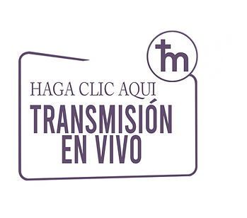 Live Stream-spanish.png