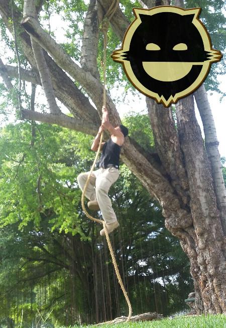 treewm_edited.jpg