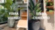 ELEMENTOS WEB-11.jpg