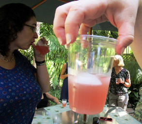 Fermented Cranberry Drink prepared by Shelley