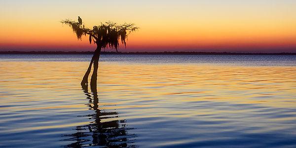 blue_cypress_lake1.jpg