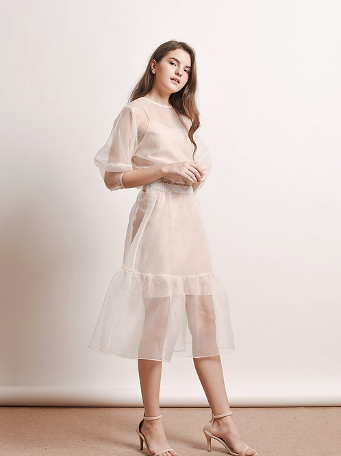 Aert sheer organza dress
